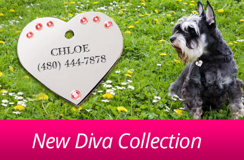 New Diva Collection